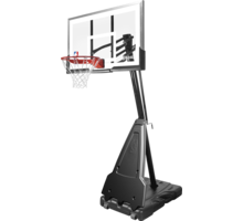 NBA Platinum Portable basketkorg