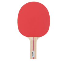 Match bordtennisracket
