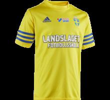 Landslagets fotbollsskola Entrada 14 t-shirt