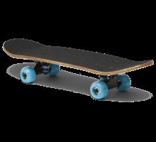 Skateboard 100
