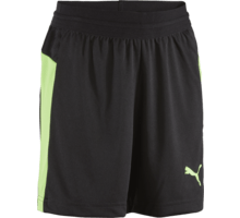 IT Evo Training Jr shorts