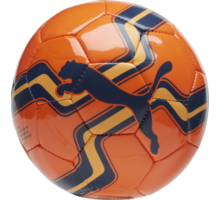Big Cat Mini fotboll