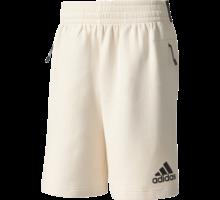 ZNE Kn ND shorts