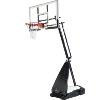 NBA Ultimate Hybrid Portable basketkorg