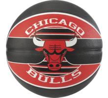 NBA Team Chicago Bulls basketboll