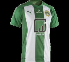 Puma matchreplica 2017 SR