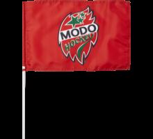 Flagga med pinne 30x45cm