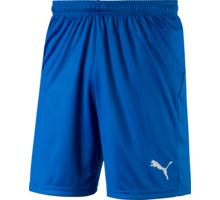 LIGA Shorts Core w Brief SR