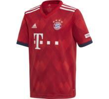 FC Bayern Home Y replica