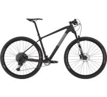 Rask R30 29 mountainbike