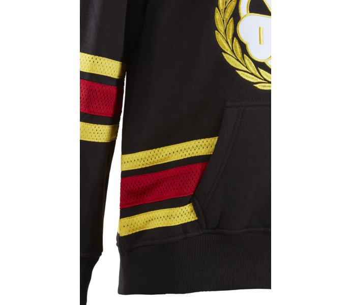 Brynäs: Brynäs IF Hockey Hood JR
