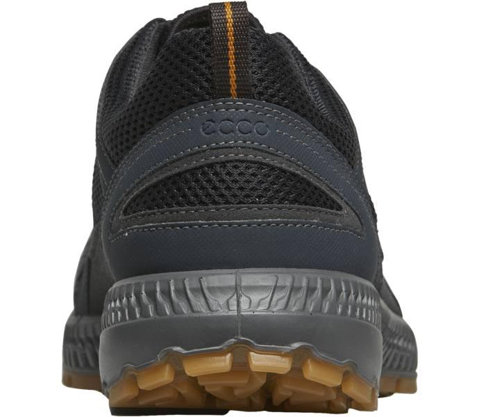 Terracruise II Pitkin M GTX walkingskor