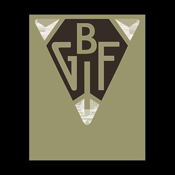 Bollnäs GIF/FF logo