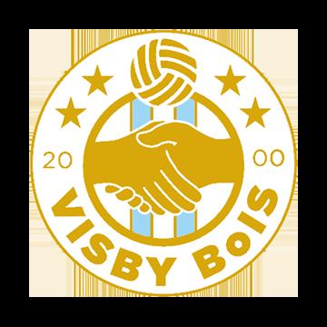 Visby BoIS logo